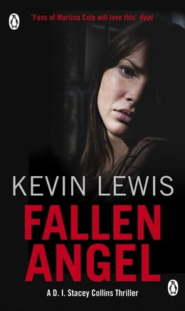 Book Fallen Angel by Kevin Lewis