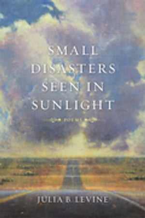 Small Disasters Seen in Sunlight: Poems