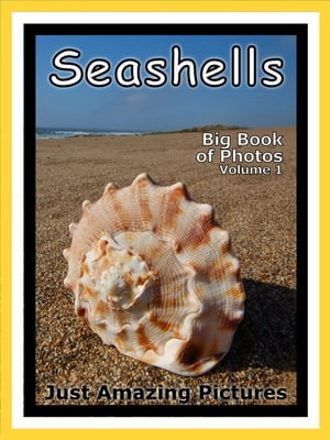 Just Seashell Photos! Big Book of Photographs & Pictures of Ocean Seashells,  Vol. 1