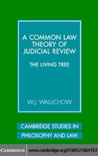 Common Law Theory Judicial Review