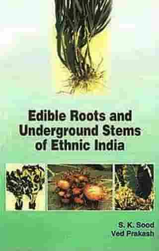 Edible Roots and Underground Stems of Ethnic India
