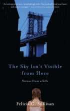 The Sky Isn't Visible from Here: Scenes from a Life