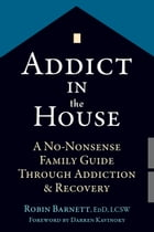 Addict in the House: A No-Nonsense Family Guide Through Addiction and Recovery by Robin Barnett, EdD, LCSW
