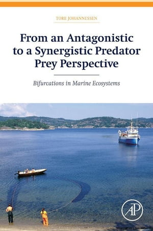 From an Antagonistic to a Synergistic Predator Prey Perspective Bifurcations in Marine Ecosystem