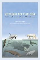 Return to the Sea: The Life and Evolutionary Times of Marine Mammals by Prof. Annalisa Berta