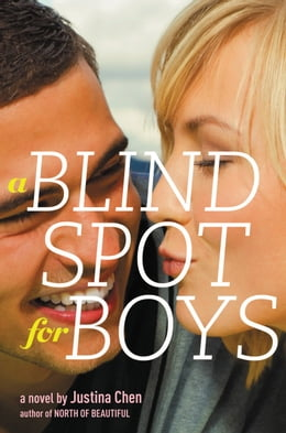 Book A Blind Spot for Boys by Justina Chen