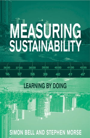 Measuring Sustainability Learning From Doing