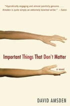 Important Things That Don't Matter: A Novel by David Amsden