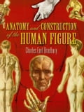 Anatomy and Construction of the Human Figure 3f495ae2-76bf-4f83-8711-783d0d9ccd28