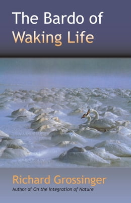 Book The Bardo of Waking Life by Richard Grossinger