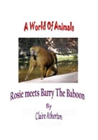 Rosie Meets Barry The Baboon by claire atherton