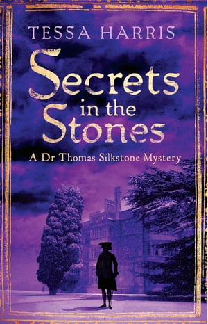 Secrets in the Stones a gripping mystery that combines the intrigue of CSI with 18th-century history