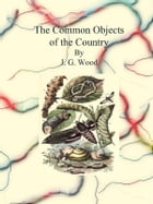 The Common Objects of the Country by J. G. Wood