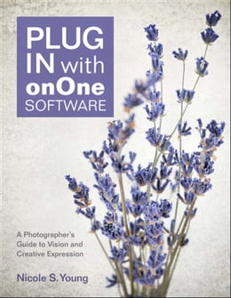 Book Plug In with onOne Software: A Photographer's Guide to Vision and Creative Expression by Nicole S. Young
