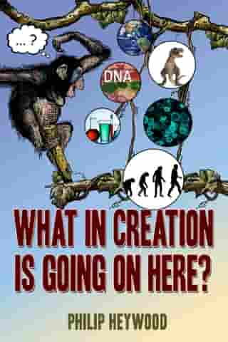 What In Creation Is Going On Here? by Philip Bruce Heywood