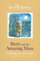 Berry and the Amazing Maze (Railway Rabbits 12) by Anna Currey