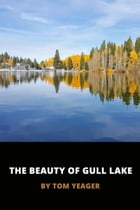 The Beauty of Gull Lake by Thomas Yeager