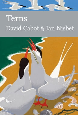 Book Terns (Collins New Naturalist Library, Book 123) by David Cabot
