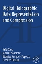 Digital Holographic Data Representation and Compression