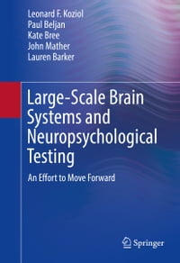 Large-Scale Brain Systems and Neuropsychological Testing: An Effort to Move Forward