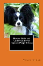 How to Train and Understand your Papillon Puppy & Dog by Vince Stead