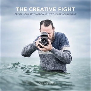 The Creative Fight Create Your Best Work and Live the Life You Imagine