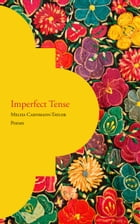 Imperfect Tense by Melisa Cahnmann-Taylor