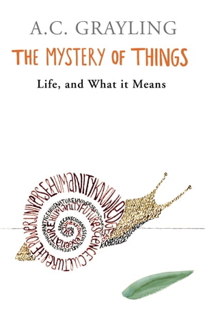 The Mystery of Things