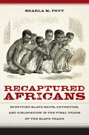 Recaptured Africans Surviving Slave Ships,  Detention,  and Dislocation in the Final Years of the Slave Trade
