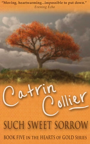 Such Sweet Sorrow by Catrin Collier