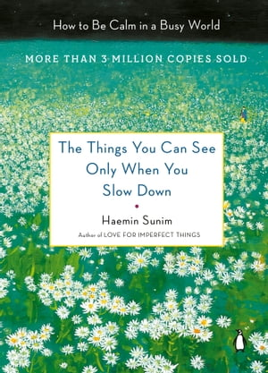 The Things You Can See Only When You Slow Down: How to Be Calm in a Busy World de Haemin Sunim