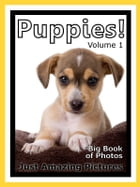 Just Puppy Photos! Big Book of Photographs & Pictures of Baby Dogs & Dog Puppies, Vol. 1 by Big Book of Photos