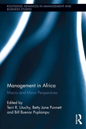 Management in Africa Macro and Micro Perspectives