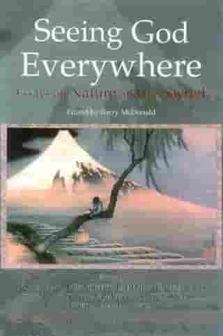Seeing God Everywhere: Essays On Nature: Essays on Nature and the Sacred by Barry McDonald