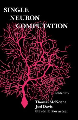 Single Neuron Computation