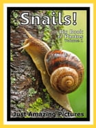 Just Snail Photos! Big Book of Photographs & Pictures of Snails, Vol. 1 by Big Book of Photos