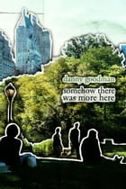 Somehow There Was More Here by Danny Goodman