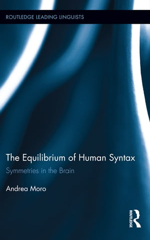 The Equilibrium of Human Syntax Symmetries in the Brain