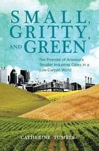 Small, Gritty, and Green: The Promise of America's Smaller Industrial Cities in a Low-Carbon World by Catherine Tumber