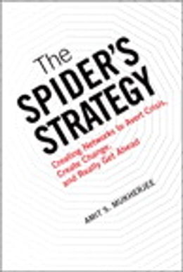 Book The Spider's Strategy: Creating Networks to Avert Crisis, Create Change, and Really Get Ahead by Amit S. Mukherjee