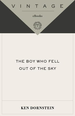Book The Boy Who Fell Out of the Sky by Ken Dornstein