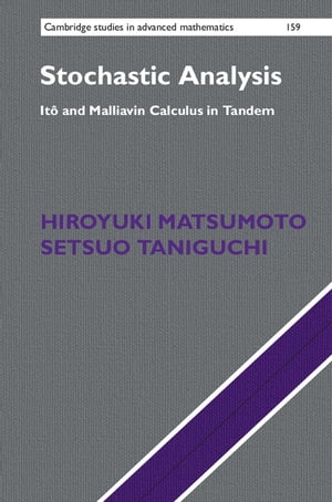Stochastic Analysis It� and Malliavin Calculus in Tandem