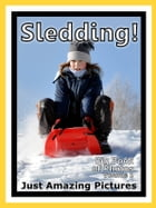Just Snow Sleds Photos! Big Book of Photographs & Pictures of Sled & Sledding, Vol. 1 by Big Book of Photos