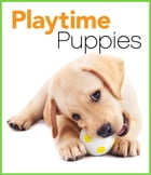 Playtime Puppies by Katie McConnaughey