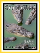 Just Crocodile & Alligator Photos! Big Book of Photographs & Pictures of Crocodiles & Alligators, Vol. 1 by Big Book of Photos