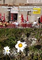 Discover San-Bernardino-Pass: + 250 Pictures with Heinz Duthel by Heinz Duthel