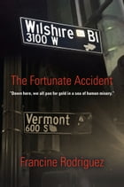 The Fortunate Accident by Francine Rodriguez