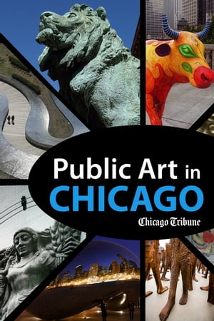 Public Art in Chicago Photography and Commentary on Sculptures,  Statues,  Murals and More