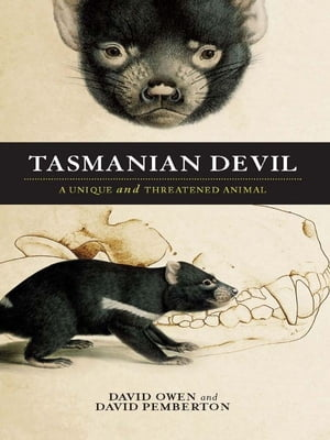 Tasmanian Devil A unique and threatened animal