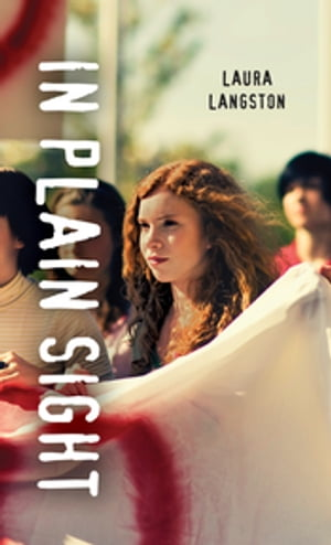 In Plain Sight by Laura Langston